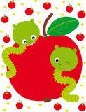 Two caterpillars. Illustration of two caterpillars eating an apple Stock Photo