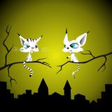 Two cats. Talk on branch in the night Stock Photo