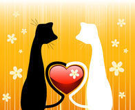 Two Cats. Two romantic cats over floral background Stock Photo