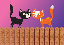 Two cats on a fence Royalty Free Stock Image