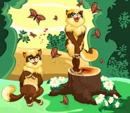 Two cats in the forest admire by the beautiful view. Two cats in the forest admired by the butterflies Stock Photo