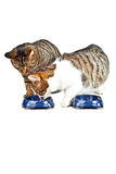 Two cats have their meal Royalty Free Stock Photo