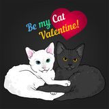 Two cats love colorful valentine card. Black and white Royalty Free Stock Images