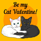 Two cats love colorful valentine card. Black and white Stock Photography
