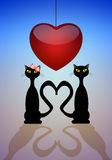 Two cats in love Royalty Free Stock Image