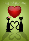 Two cats in love Stock Photo