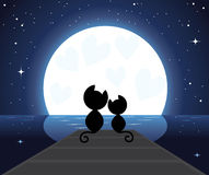 Two cats in love watching on the moon Royalty Free Stock Photos