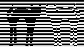 Two cats in monochrome animation. Stripped black and white background with cat silhouettes. Black tomcat and stripped. Cat. 4k video stock video footage