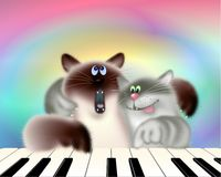 Two Cats Playing Piano Royalty Free Stock Images