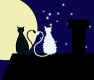 Two cats on the roof. Two cats are sitting on the rooftop with their tails are heart-shaped Royalty Free Stock Photo
