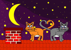 Two cats on roof. Cat on roof in night under stars Royalty Free Stock Image