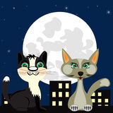 Two cats on roof Royalty Free Stock Image