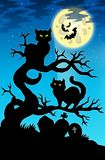 Two cats silhouette with full moon Stock Image