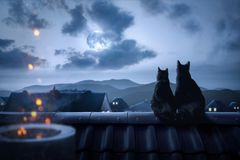 Cats on a rooftop watching the full moon Royalty Free Stock Photo