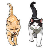 Two cats with their tails up walking frontally. Cartoon two cats with their tails up walking frontally Royalty Free Stock Photos