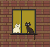 Two cats on a window Royalty Free Stock Photography
