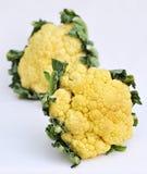 Two cauliflower Stock Image