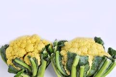 Two cauliflower Stock Photo