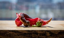 Cayenne peppers twisted together on a wooden block. Two cayenne peppers twisted together on a wooden block royalty free stock images