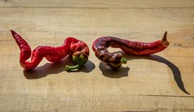 Cayenne peppers on a wooden block next to each other with a long shadow. Two cayenne peppers on a wooden block next to each other with a long shadow royalty free stock photos