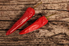 Two cayenne or red hot chilli peppers Royalty Free Stock Image