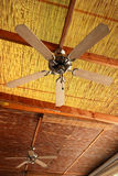 Two ceiling fans. Two fans on the reed ceiling stock photography