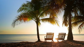 Two Chairs Placed in the Sand. Idyllic scene with two chairs in between of two palms, placed perfectly for watching the sunrise, detailed zoomed shot stock footage