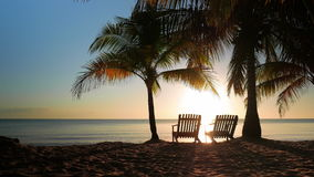 Two Chairs Placed in the Sand. Idyllic scene with two chairs in between of two palms, placed perfectly for watching the sunrise, long shot stock video footage