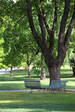 Two chairs under tree in park Stock Photography