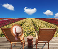 Two chaise lounges for rest. Stand on scaffold at a picturesque flower field. On one chaise lounge the elegant straw hat hangs. Spring buttercups grow multi royalty free stock photography
