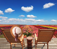 Two chaise lounges and straw hat Stock Photography