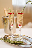 Two champaign glasses isolated on white. Two champaign glasses on a tray isolated on white background Royalty Free Stock Photography