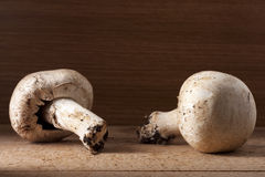 Two Champignon Mushrooms Royalty Free Stock Photography