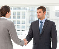 Two charismatic businesspeople shaking their hands Royalty Free Stock Images