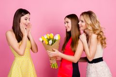 Two charming girls giving bouquet of colorful tulips to their fr. Iend who shocked, amazed, impressed, holding hands near cheeks, standing over pink background Stock Images