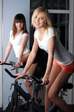 Two charming girls in a sports hall Royalty Free Stock Photos