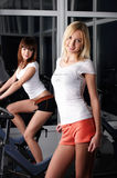 Two charming girls in a sports hall Stock Image