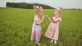 Two charming little twins sisters blow soap bubbles on a green meadow in summer. stock video