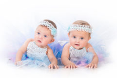Two charming sisters baby twins in the lush beautiful dresses.  royalty free stock photography