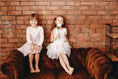 Two charming sisters dressed in beautiful dresses are sitting on the brown armchair on the background of a brick wall royalty free stock photo