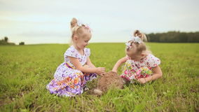 Two charming sisters twins amuse themselves on a green meadow with fluffy rabbit.