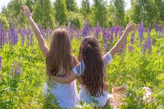 Two charming young girls with long hair sit hugging, hands raised up on the field with flowers. Girlfriends The concept royalty free stock photos
