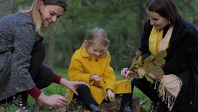 Two charming young women and cute little girl collect a bouquet of beautiful autumn leaves on lawn in park during the