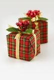 Two checkered gift boxes. Close-up view of two checked red-green gift boxes, tied up with golden lace, decorated in christmas spirit, white background Stock Photography