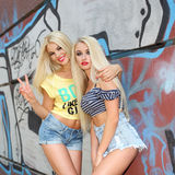 Two cheerful blondes Stock Image