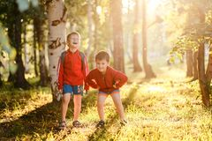 Two cheerful boys on the Sunny meadow. Two boys in shorts in the Park on warm summer evening. Two cheerful boys on the Sunny meadow in the contour light. summer royalty free stock photography