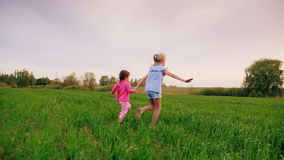 Two cheerful carefree kids hold hands. Together they run along the green meadow, having fun stock footage