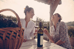 Two Cheerful Female Drinking Wine Royalty Free Stock Photos