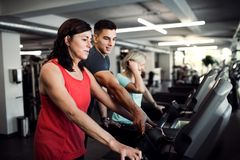 Two cheerful female seniors in gym with a young trainer doing cardio work out. royalty free stock image