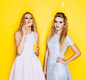 Two cheerful girlfriends beautiful girl inflate soap bubbles and having fun Royalty Free Stock Image